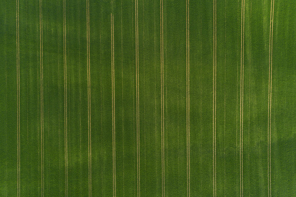 fortschritte der landwirtschaft