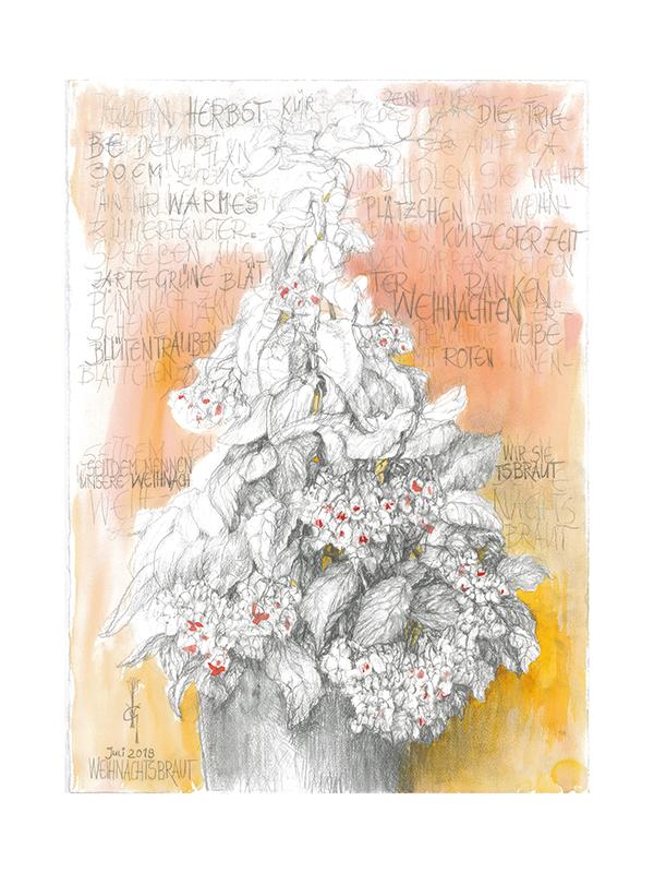 weihnachtsbraut