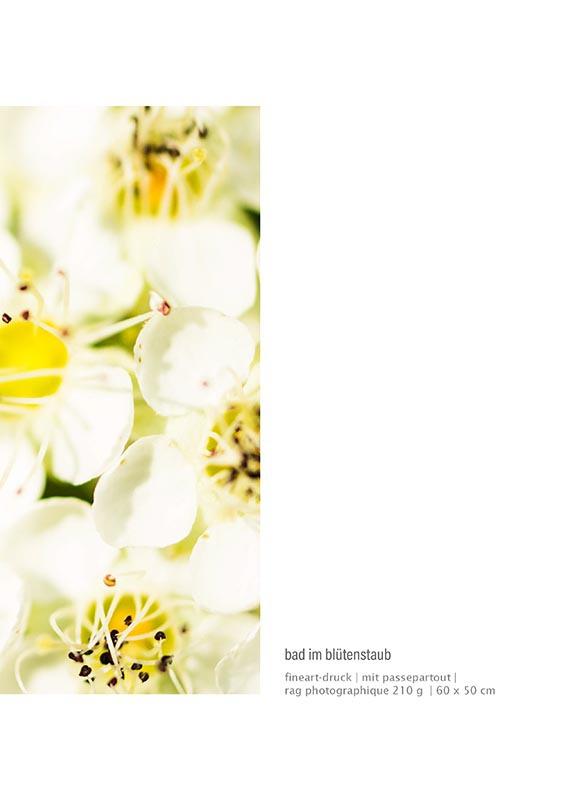 katalog-a4_schachtschabel_Seite_15