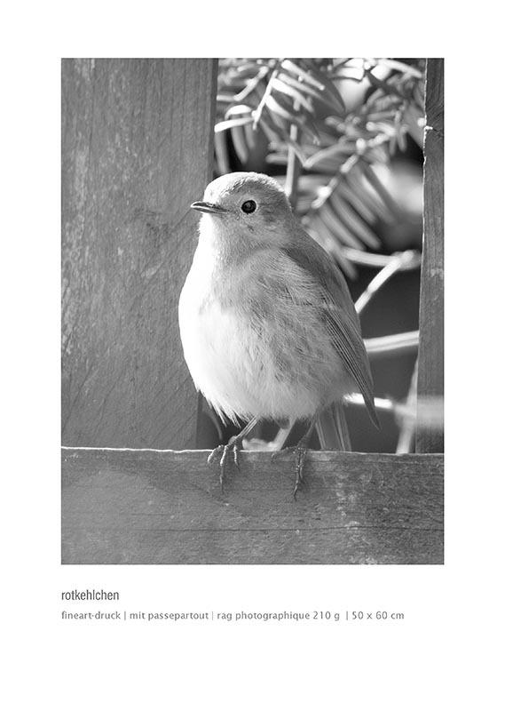katalog-a4_schachtschabel_Seite_30